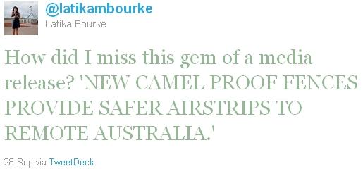 tweet on camel fences